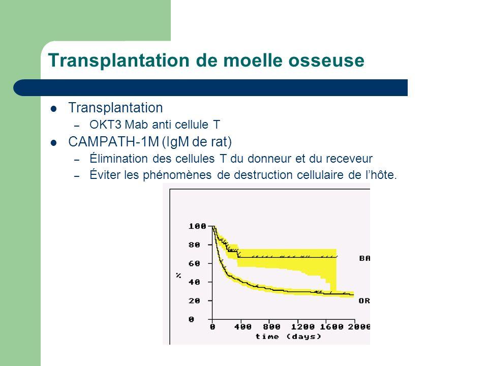 Transplantation de moelle osseuse Transplantation – OKT3 Mab anti cellule T CAMPATH-1M (IgM de rat) – Élimination des cellules T du donneur et du rece