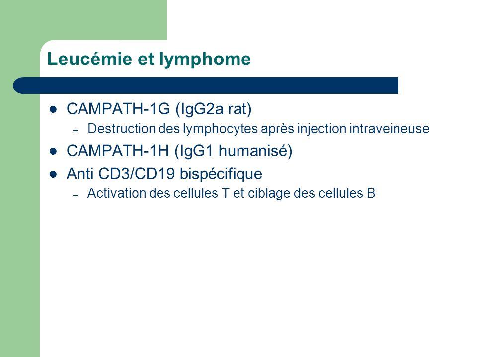 Leucémie et lymphome CAMPATH-1G (IgG2a rat) – Destruction des lymphocytes après injection intraveineuse CAMPATH-1H (IgG1 humanisé) Anti CD3/CD19 bispé