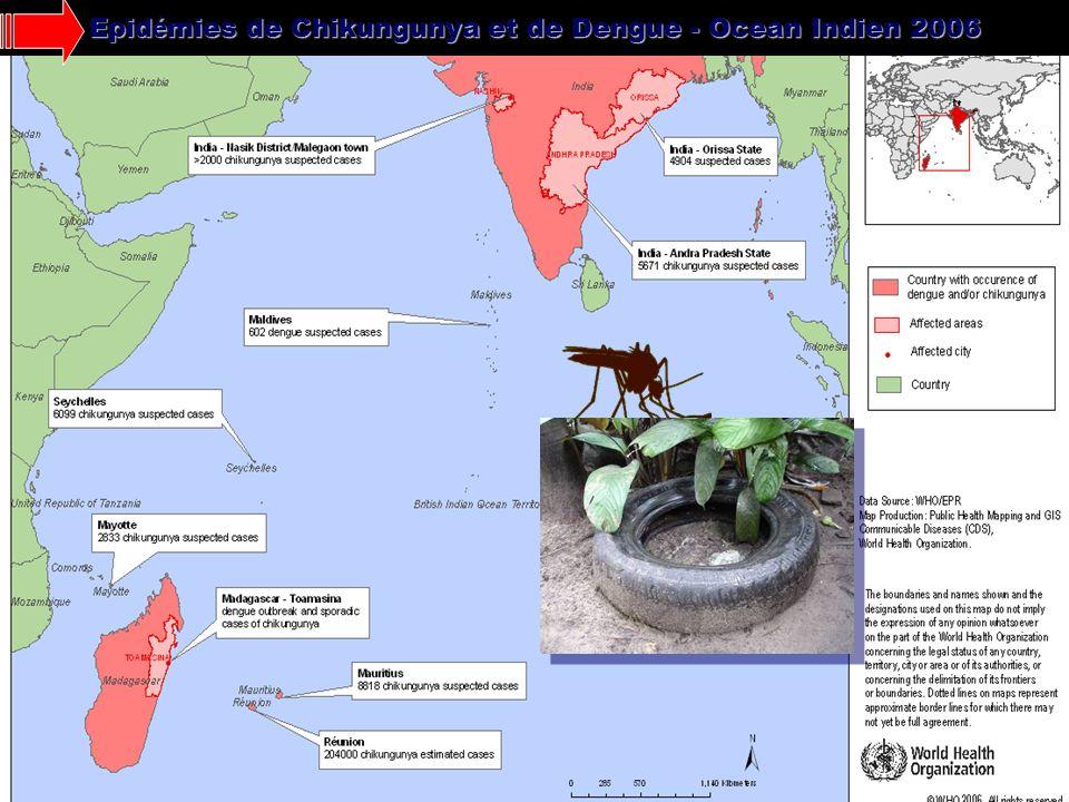 Epid é mies de Chikungunya et de Dengue - Ocean Indien 2006