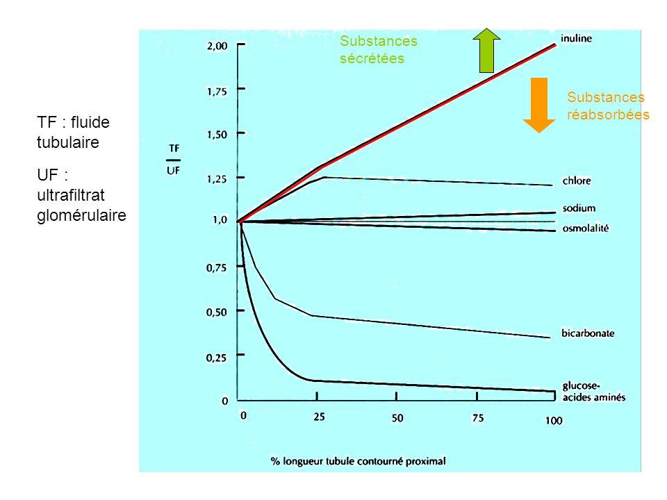 TF : fluide tubulaire UF : ultrafiltrat glomérulaire Substances réabsorbées Substances sécrétées