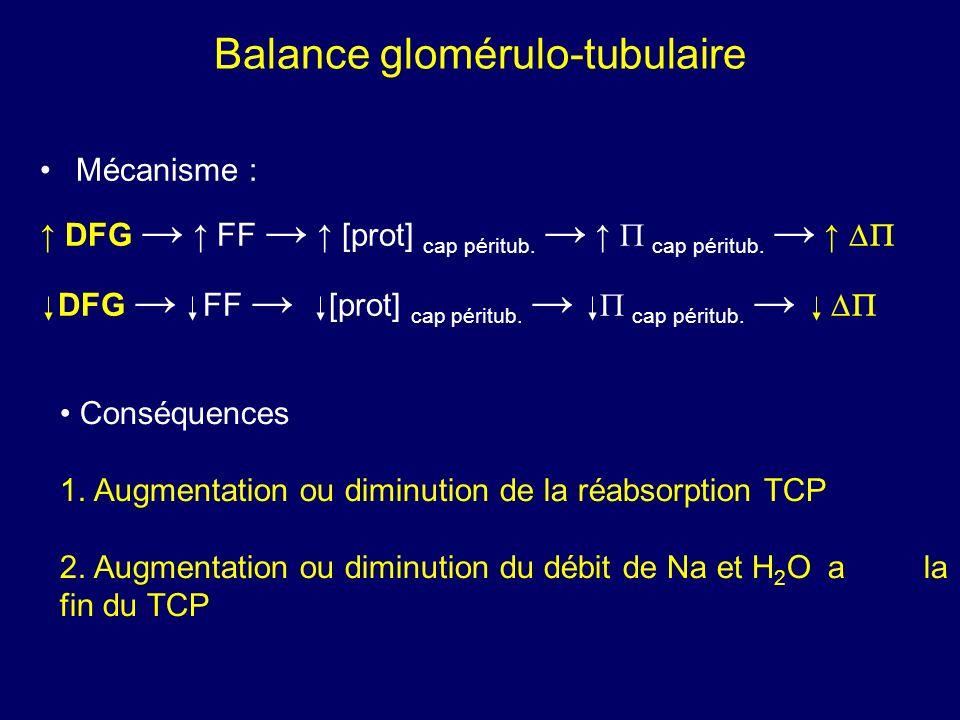 Mécanisme : DFG FF [prot] cap péritub. cap péritub.