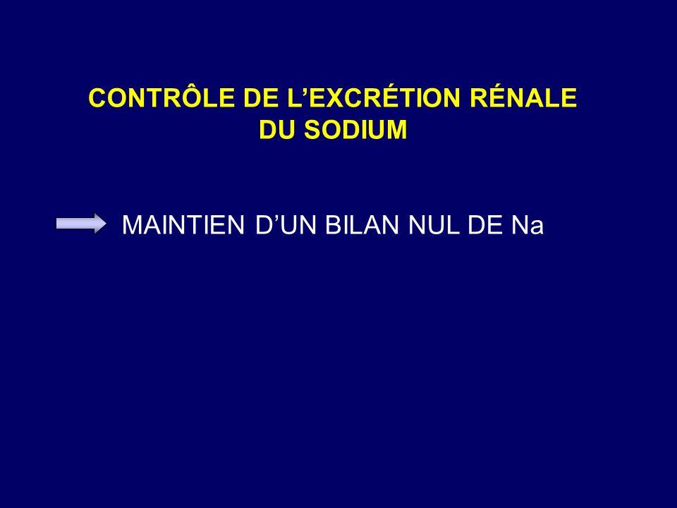 CONTRÔLE DE LEXCRÉTION RÉNALE DU SODIUM MAINTIEN DUN BILAN NUL DE Na