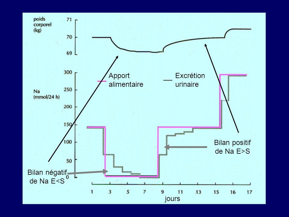 jours Apport alimentaire Excrétion urinaire Bilan positif de Na E>S Bilan négatif de Na E<S