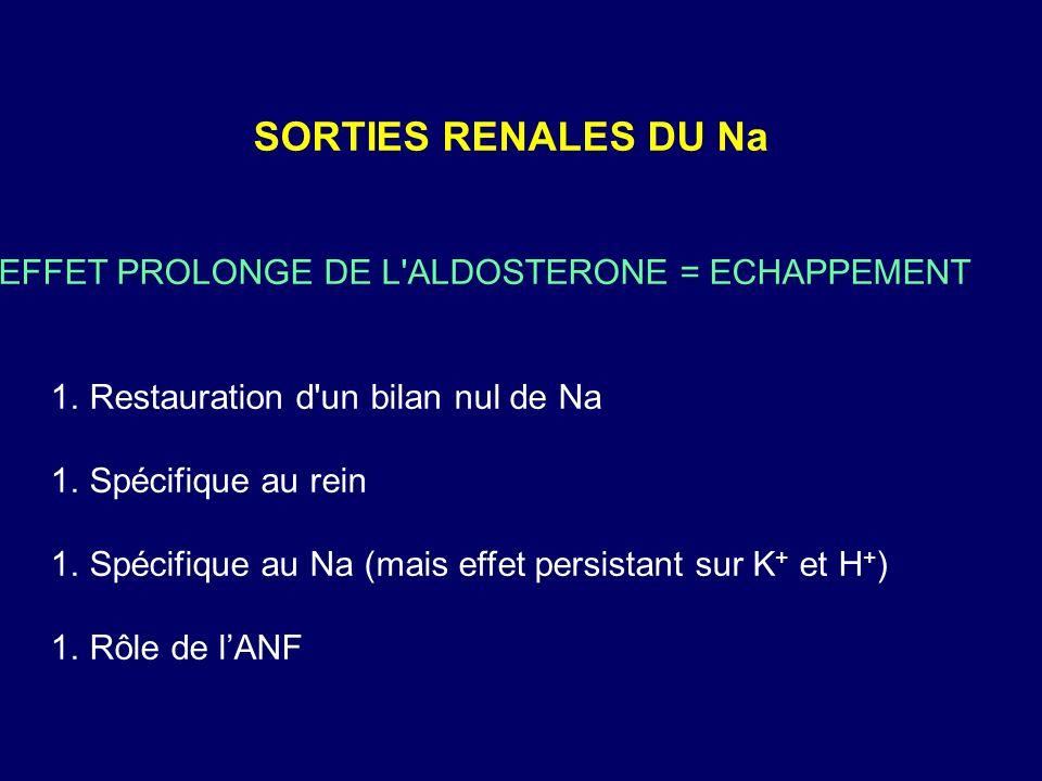 SORTIES RENALES DU Na EFFET PROLONGE DE L ALDOSTERONE = ECHAPPEMENT 1.Restauration d un bilan nul de Na 1.Spécifique au rein 1.Spécifique au Na (mais effet persistant sur K + et H + ) 1.Rôle de lANF