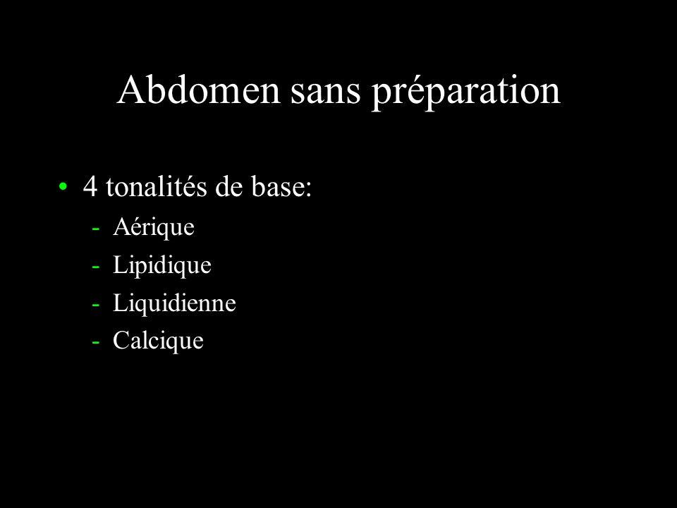 Abdomen sans préparation 4 tonalités de base: -Aérique -Lipidique -Liquidienne -Calcique