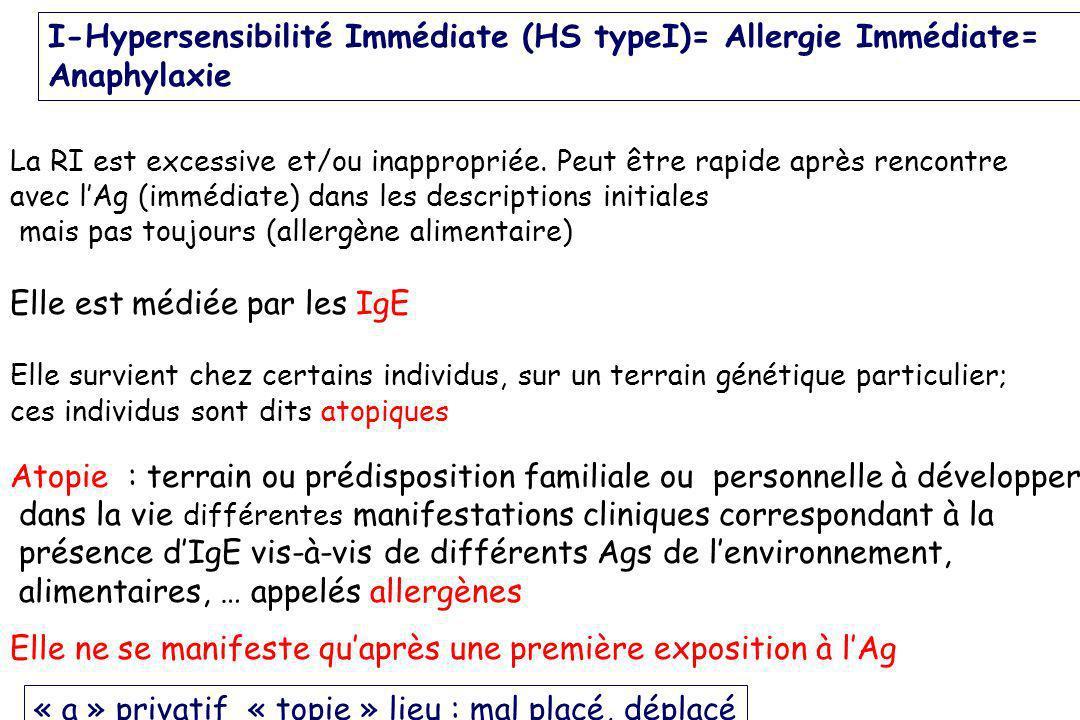 I-Hypersensibilité Immédiate (HS typeI)= Allergie Immédiate= Anaphylaxie La RI est excessive et/ou inappropriée. Peut être rapide après rencontre avec