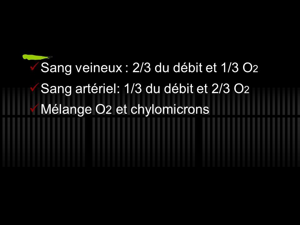 Sang veineux : 2/3 du débit et 1/3 O 2 Sang artériel: 1/3 du débit et 2/3 O 2 Mélange O 2 et chylomicrons