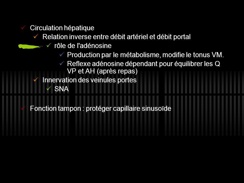Circulation hépatique Relation inverse entre débit artériel et débit portal rôle de l'adénosine Production par le métabolisme, modifie le tonus VM. Re