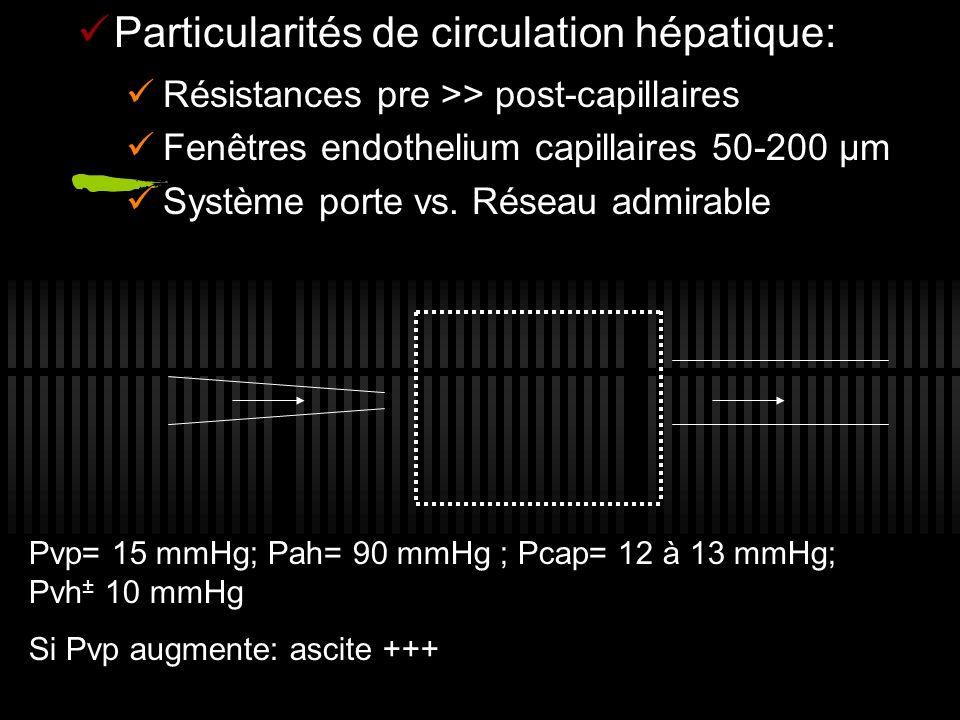 Particularités de circulation hépatique: Résistances pre >> post-capillaires Fenêtres endothelium capillaires 50-200 µm Système porte vs. Réseau admir