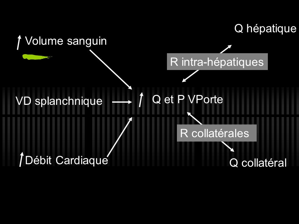 Volume sanguin VD splanchnique Débit Cardiaque Q et P VPorte Q hépatique R intra-hépatiques Q collatéral R collatérales