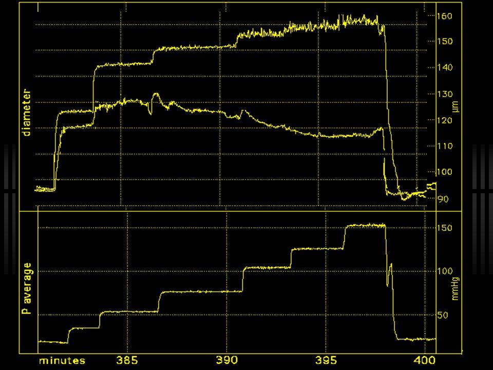 Percentage of passive diameter at 100 mmHg 50 100 10 30 70 110 150 190 230 270 mmHg