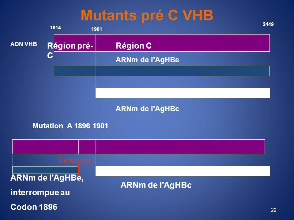 22 Mutants pré C VHB 1814 ARNm de l AgHBe ARNm de l AgHBc ADN VHB Région pré- C Région C 1901 2449 Mutation A 1896 1901 ARNm de l AgHBe, interrompue au Codon 1896 ARNm de l AgHBc Codon stop