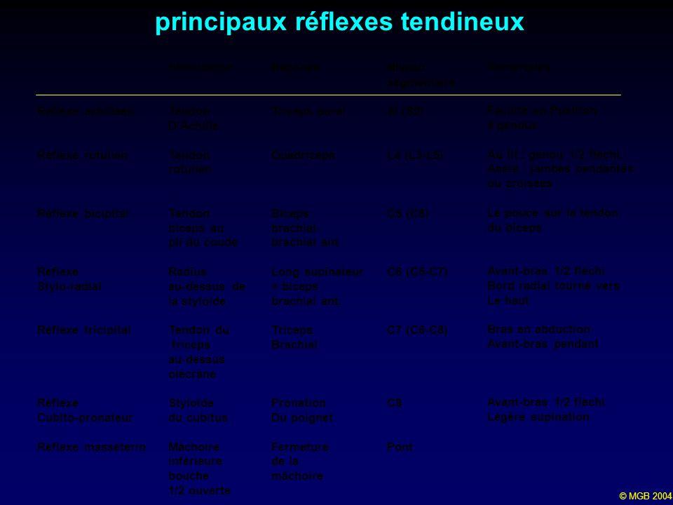 © MGB 2004 principaux réflexes tendineux Stimulation Tendon DAchille Tendon rotulien Tendon biceps au pli du coude Radius au-dessus de la styloïde Ten