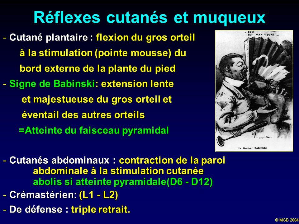 © MGB 2004 Réflexes cutanés et muqueux -Cutané plantaire : flexion du gros orteil à la stimulation (pointe mousse) du à la stimulation (pointe mousse)