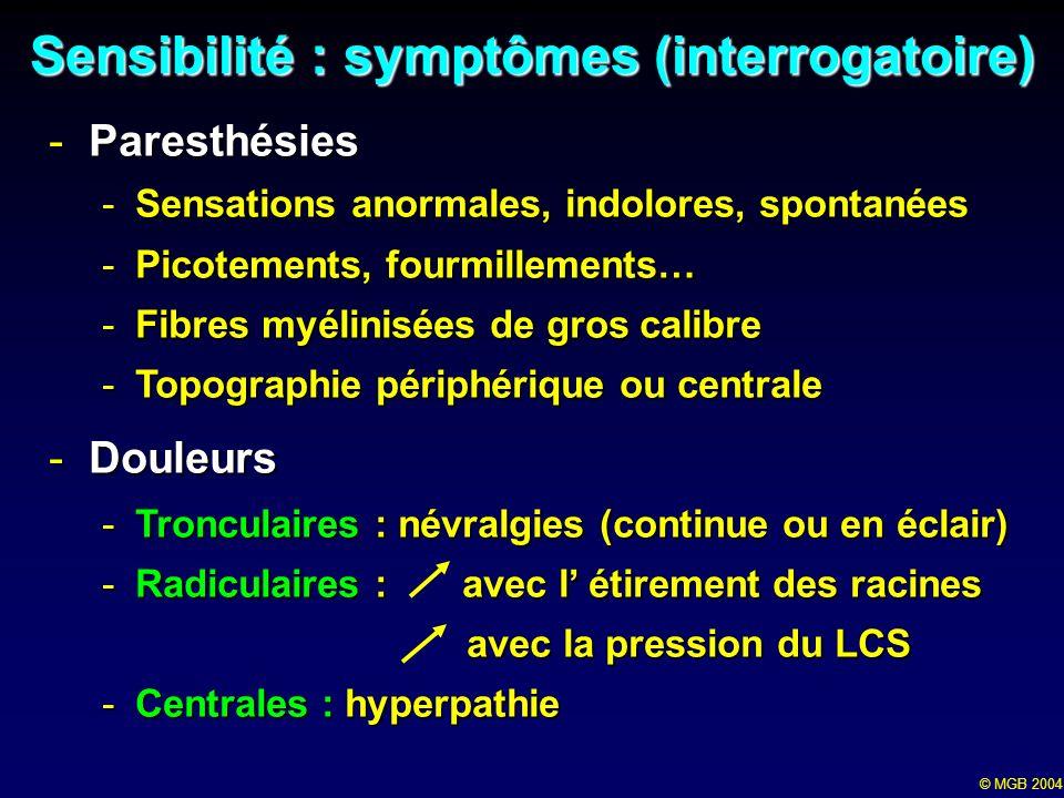 © MGB 2004 Sensibilités élémentaires:examen -Sensibilité cutanée (superficielle) -Tact grossier (doigt, coton) -Température : 2 tubes remplis deau (glace et 40°) -Douleur ( analgésie, hyperpathie) piqûre (sujet conscient) piqûre (sujet conscient) pincement (coma) pincement (coma) Petites fibres : système spinothalamique Petites fibres : système spinothalamique -Sensibilité proprioceptive (profonde) + tact fin discriminatif Grosses fibres myélinisées, Grosses fibres myélinisées, Système lemniscal Système lemniscal