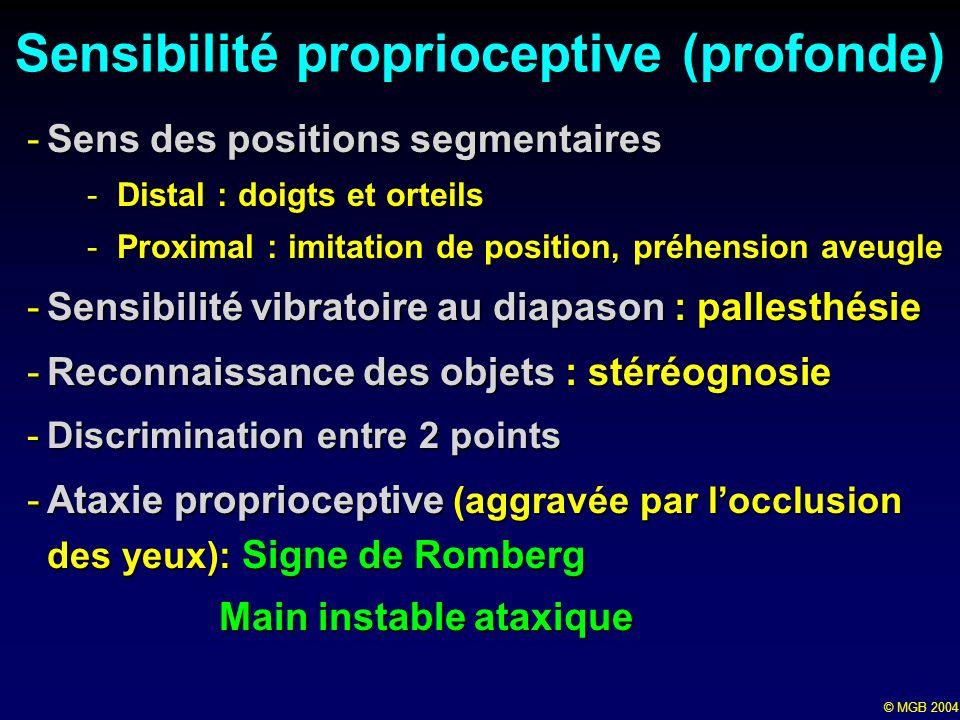 © MGB 2004 Sensibilité proprioceptive (profonde) -Sens des positions segmentaires -Distal : doigts et orteils -Proximal : imitation de position, préhe