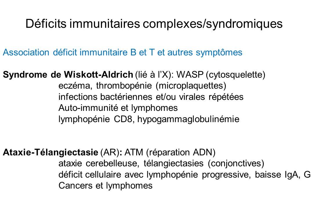 Déficits immunitaires complexes/syndromiques Association déficit immunitaire B et T et autres symptômes Syndrome de Wiskott-Aldrich (lié à lX): WASP (