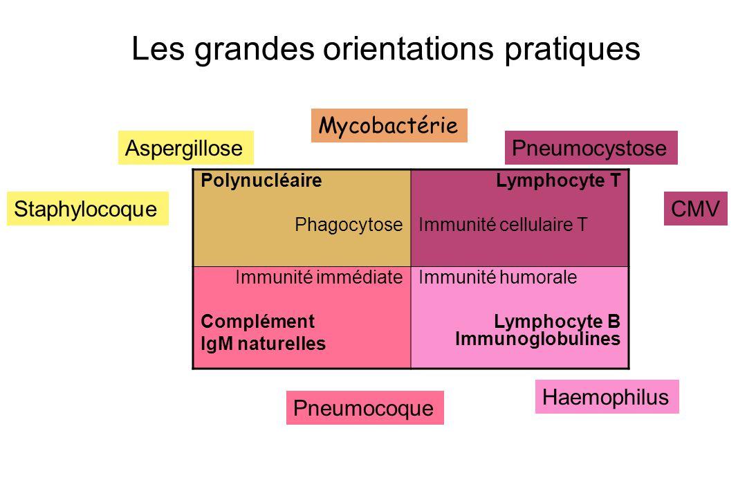 Les grandes orientations pratiques Polynucléaire Phagocytose Lymphocyte T Immunité cellulaire T Immunité immédiate Complément IgM naturelles Immunité