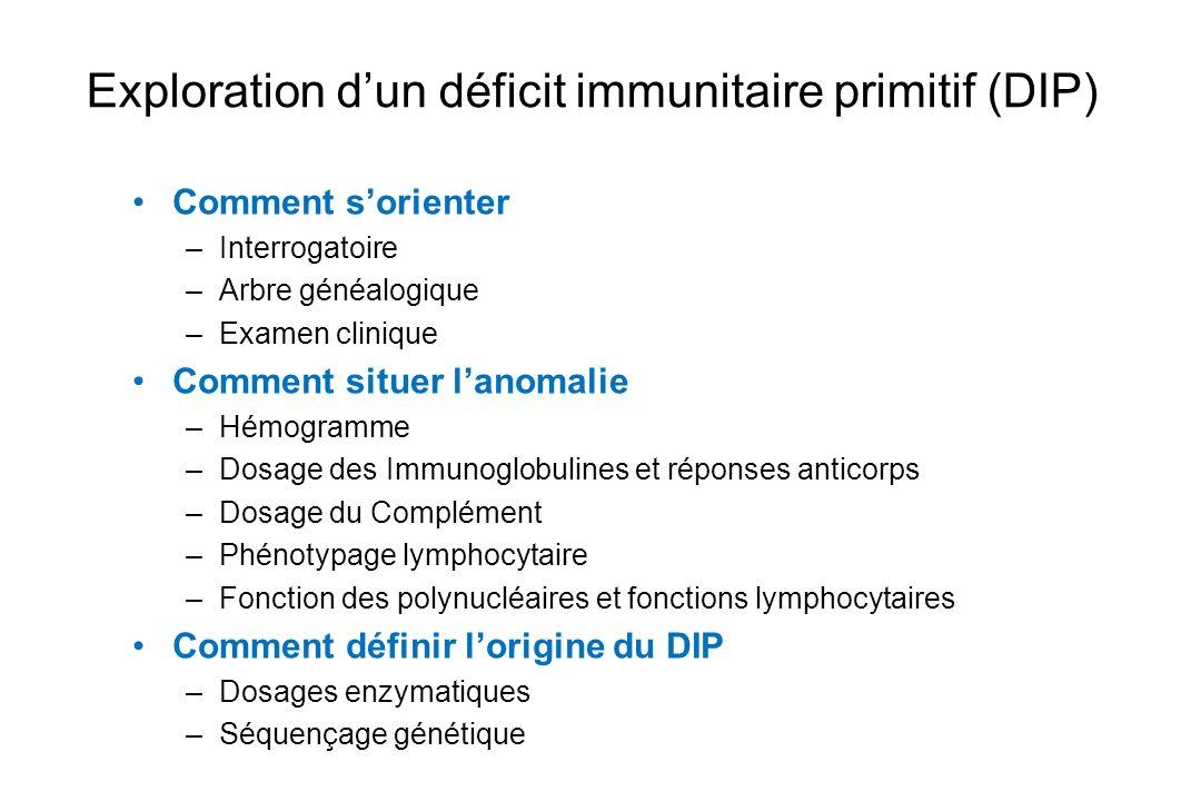 Exploration dun déficit immunitaire primitif (DIP) Comment sorienter –Interrogatoire –Arbre généalogique –Examen clinique Comment situer lanomalie –Hé