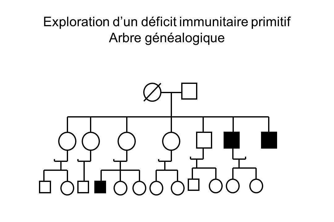 Exploration dun déficit immunitaire primitif Arbre généalogique