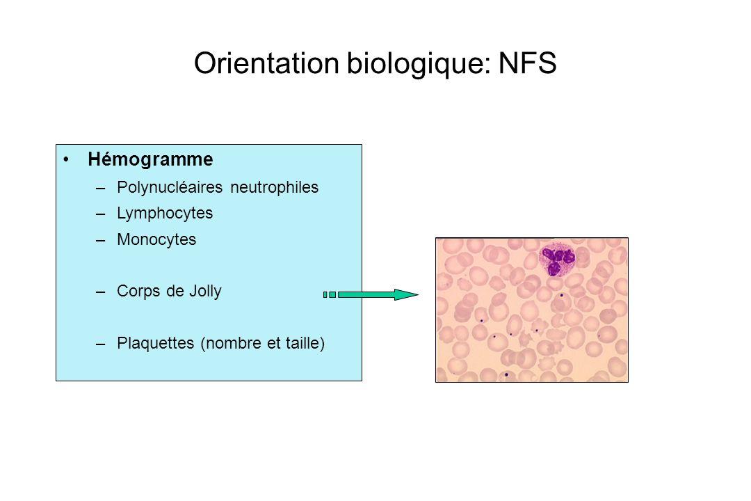 Hémogramme –Polynucléaires neutrophiles –Lymphocytes –Monocytes –Corps de Jolly –Plaquettes (nombre et taille) Orientation biologique: NFS