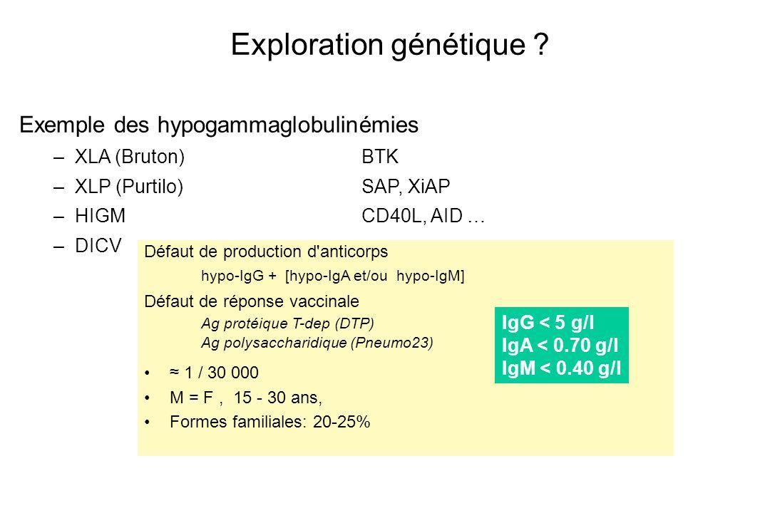 Exploration génétique ? Exemple des hypogammaglobulinémies –XLA (Bruton)BTK –XLP (Purtilo)SAP, XiAP –HIGMCD40L, AID … –DICV Défaut de production d'ant