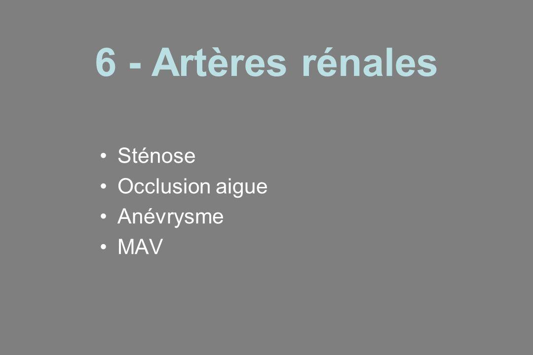 6 - Artères rénales Sténose Occlusion aigue Anévrysme MAV
