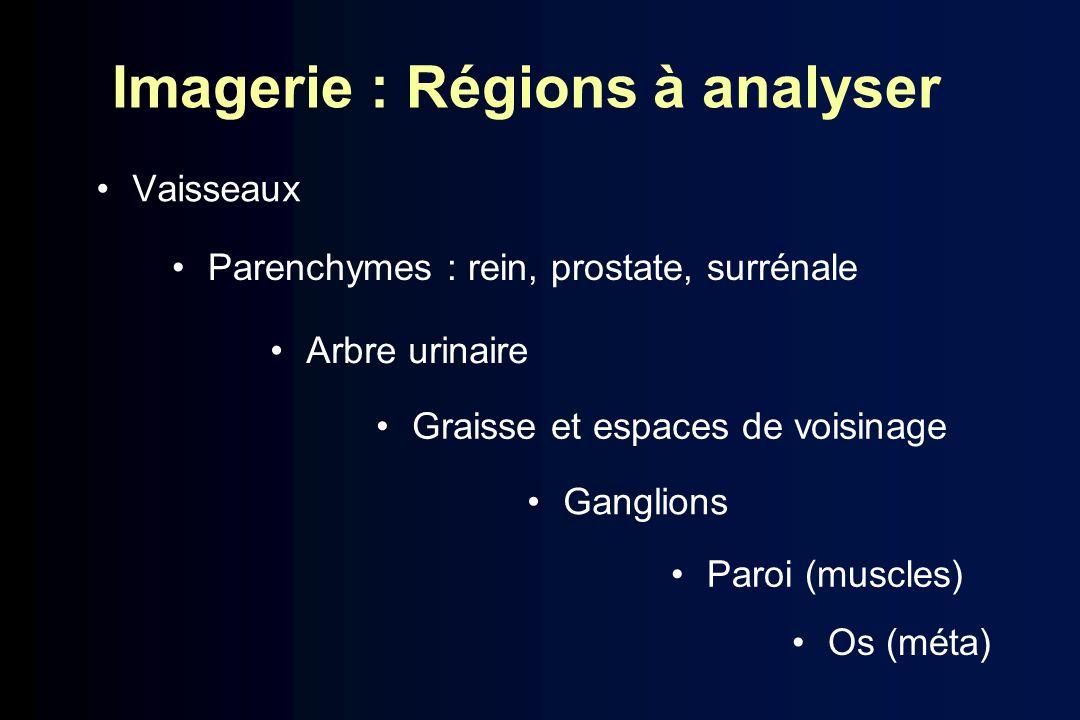 Imagerie : Régions à analyser Vaisseaux Parenchymes : rein, prostate, surrénale Arbre urinaire Graisse et espaces de voisinage Ganglions Paroi (muscle