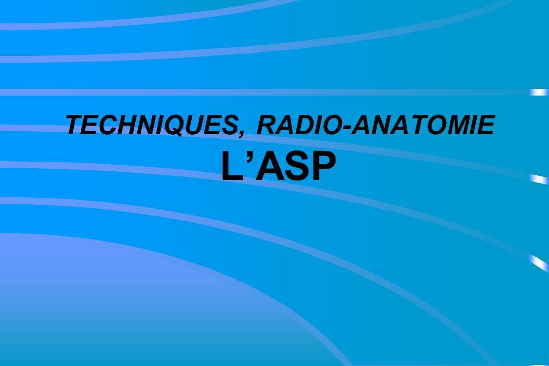 TECHNIQUES, RADIO-ANATOMIE LASP