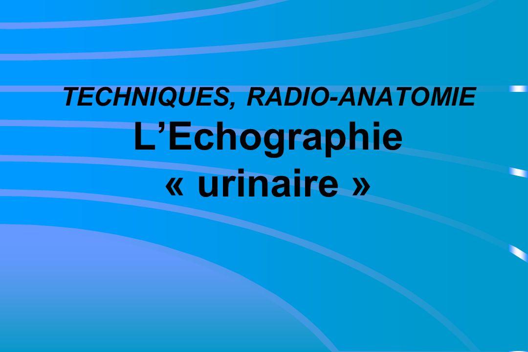 TECHNIQUES, RADIO-ANATOMIE LEchographie « urinaire »