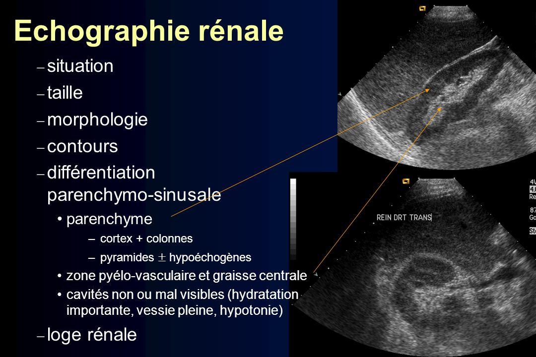 Echographie rénale situation taille morphologie contours différentiation parenchymo-sinusale parenchyme –cortex + colonnes –pyramides hypoéchogènes zo