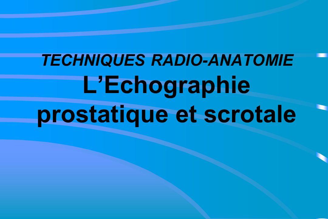 TECHNIQUES RADIO-ANATOMIE LEchographie prostatique et scrotale