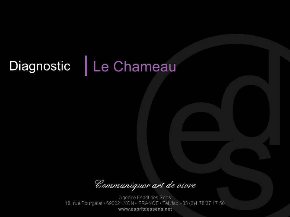 Agence Esprit des Sens 18, rue Bourgelat 69002 LYON FRANCE Tél./fax +33 (0)4 78 37 17 50 www.espritdessens.net Diagnostic | Le Chameau