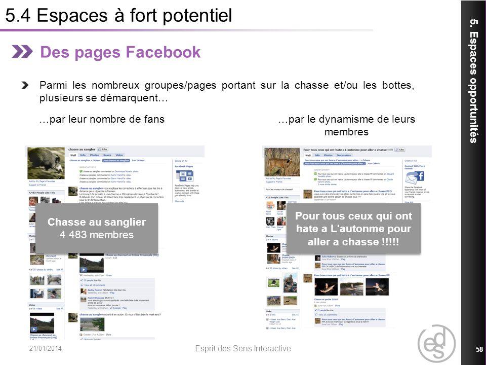 5.4 Espaces à fort potentiel 21/01/2014 Esprit des Sens Interactive 58 5. Espaces opportunités Des pages Facebook Parmi les nombreux groupes/pages por