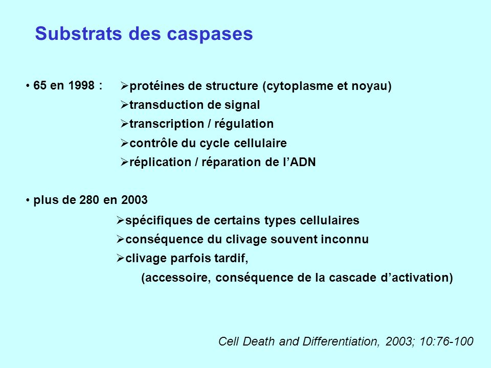 Substrats des caspases 65 en 1998 : plus de 280 en 2003 protéines de structure (cytoplasme et noyau) transduction de signal transcription / régulation