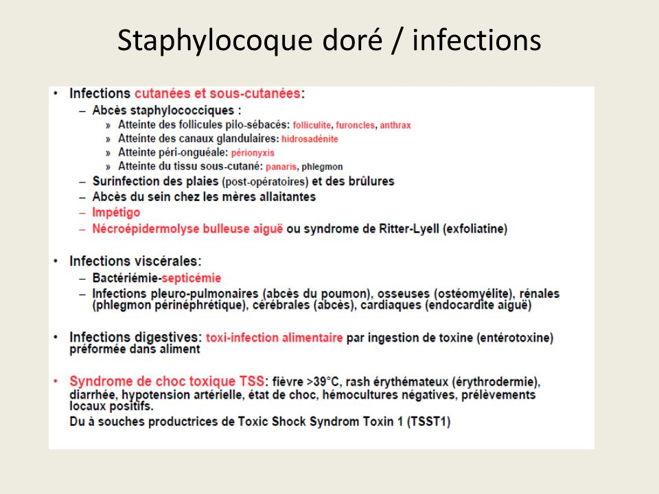 Staphylocoque doré / infections