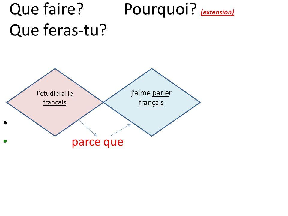 jaime parler français Jetudierai le français Que faire? Pourquoi? (extension) Que feras-tu? parce que