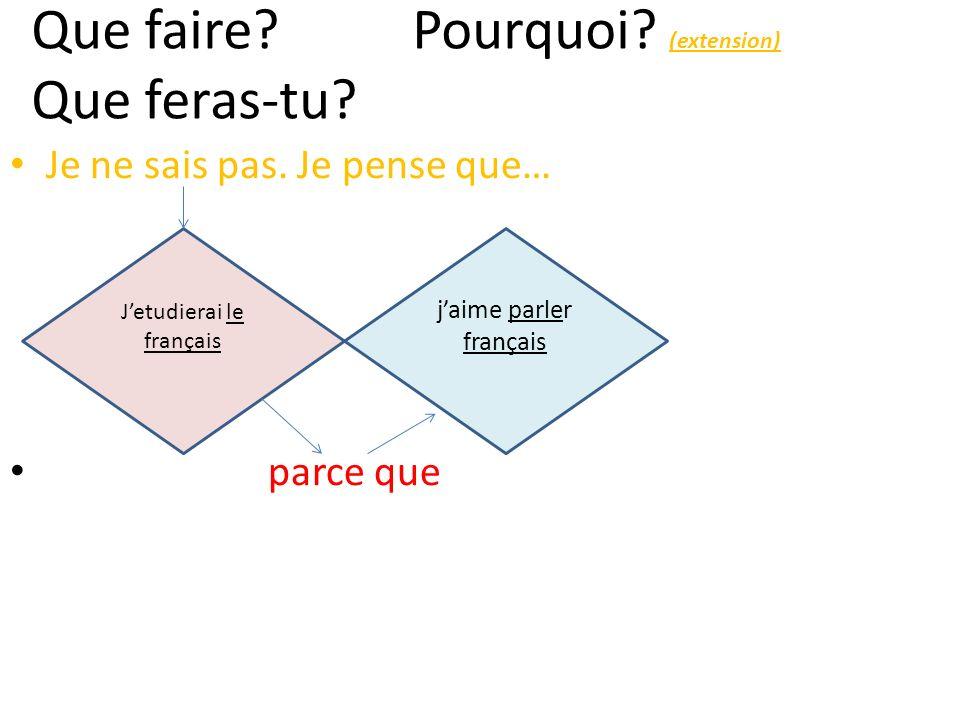 jaime parler français Jetudierai le français Que faire? Pourquoi? (extension) Que feras-tu? Je ne sais pas. Je pense que… parce que