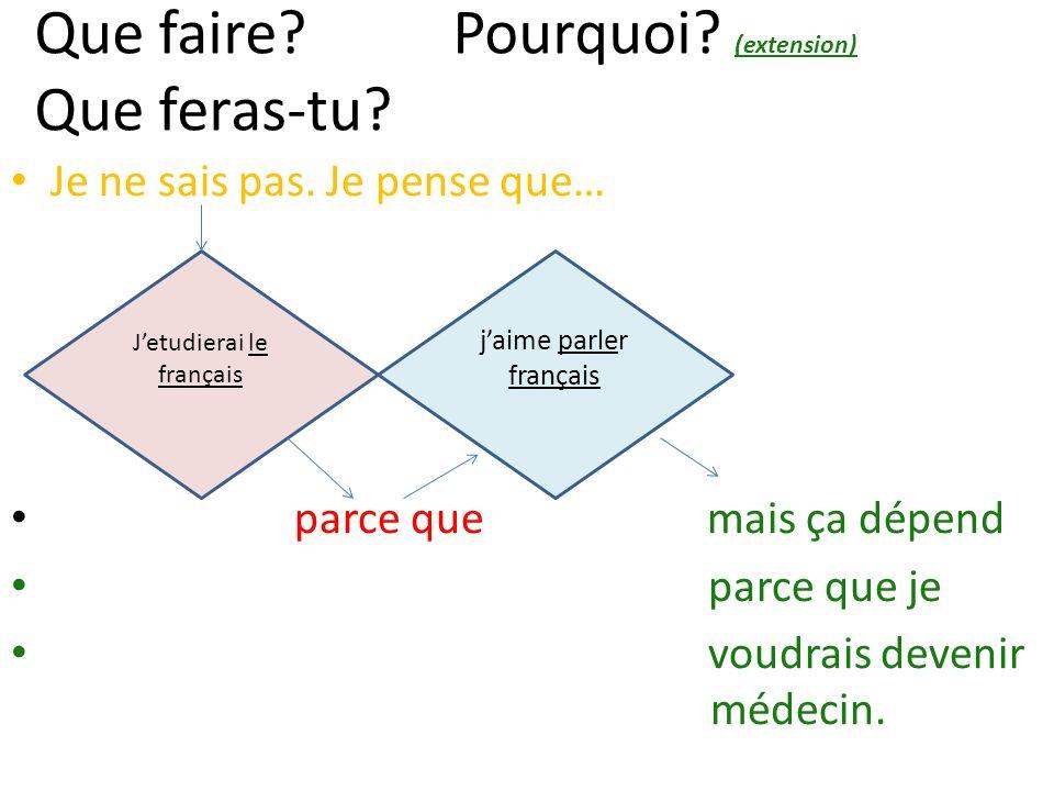 jaime parler français Jetudierai le français Que faire? Pourquoi? (extension) Que feras-tu? Je ne sais pas. Je pense que… parce que mais ça dépend par
