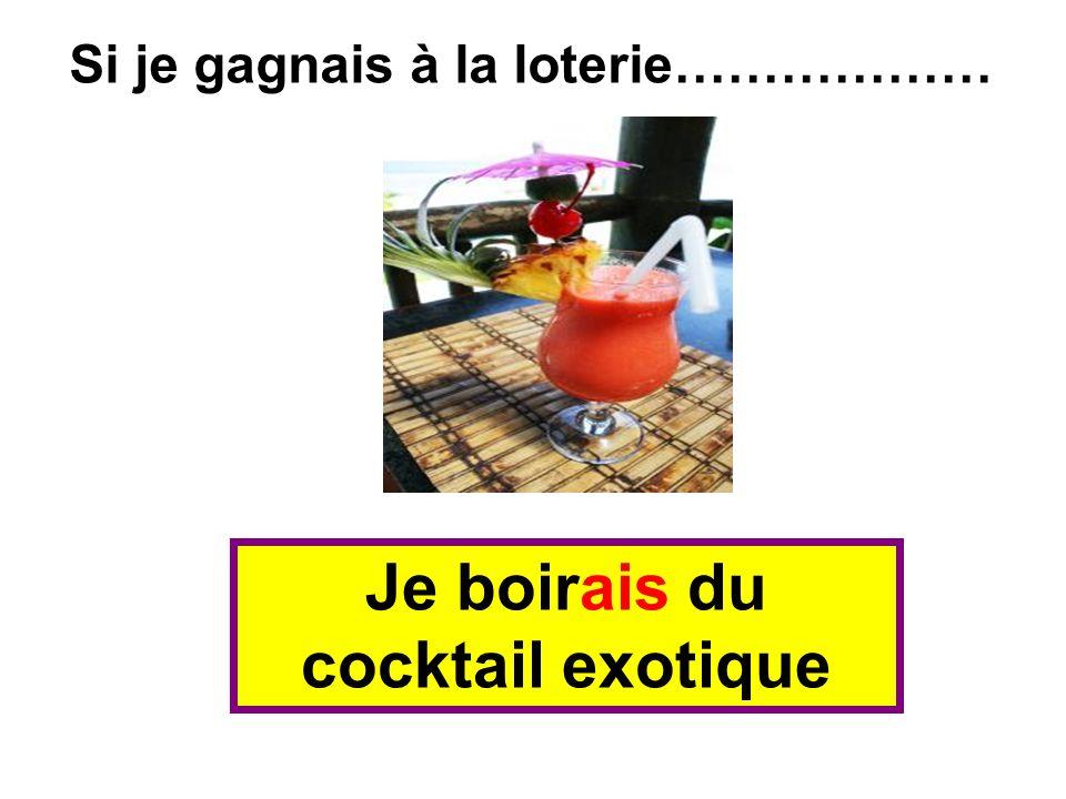 Je boirais du cocktail exotique Si je gagnais à la loterie………………