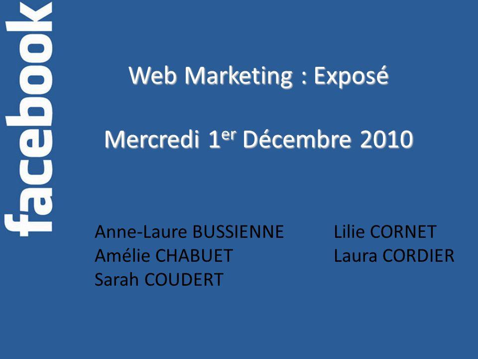 Web Marketing : Exposé Mercredi 1 er Décembre 2010 Anne-Laure BUSSIENNELilie CORNET Amélie CHABUETLaura CORDIER Sarah COUDERT