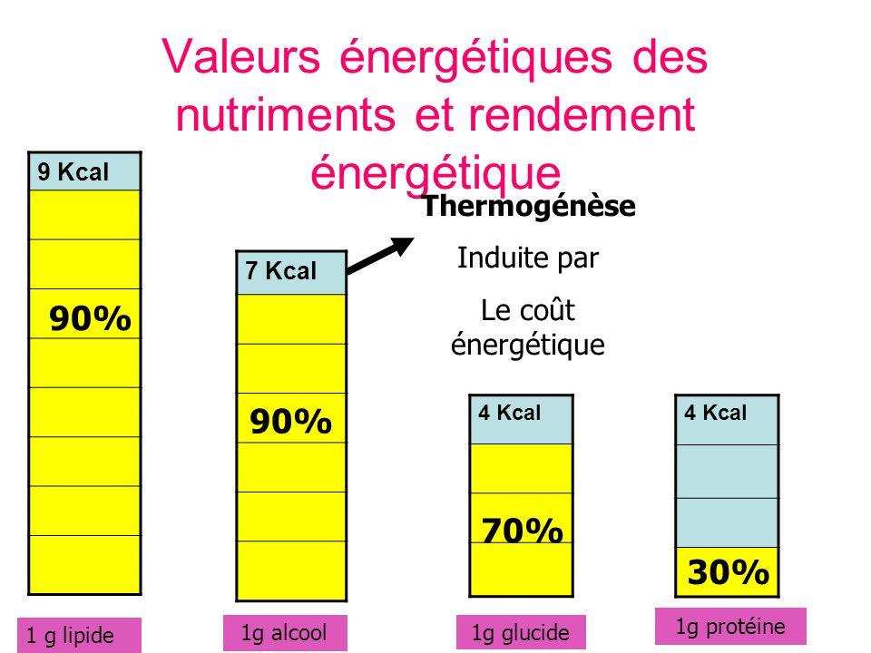 Valeurs énergétiques des nutriments et rendement énergétique 9 Kcal 7 Kcal 4 Kcal 1 g lipide 1g alcool 1g glucide 1g protéine Thermogénèse Induite par Le coût énergétique 90% 70% 30%