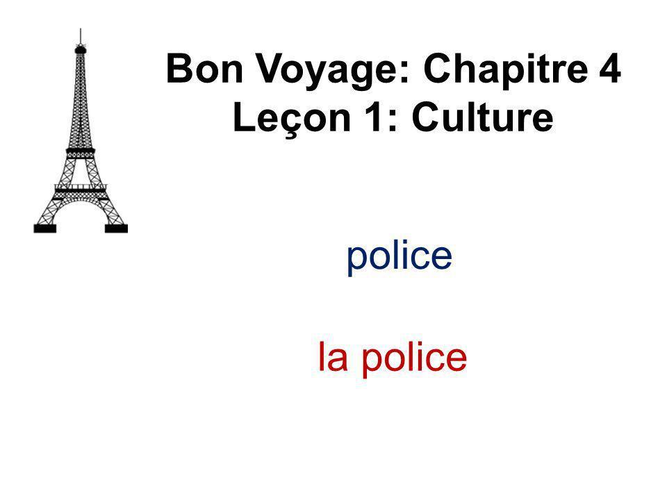 police Bon Voyage: Chapitre 4 Leçon 1: Culture la police