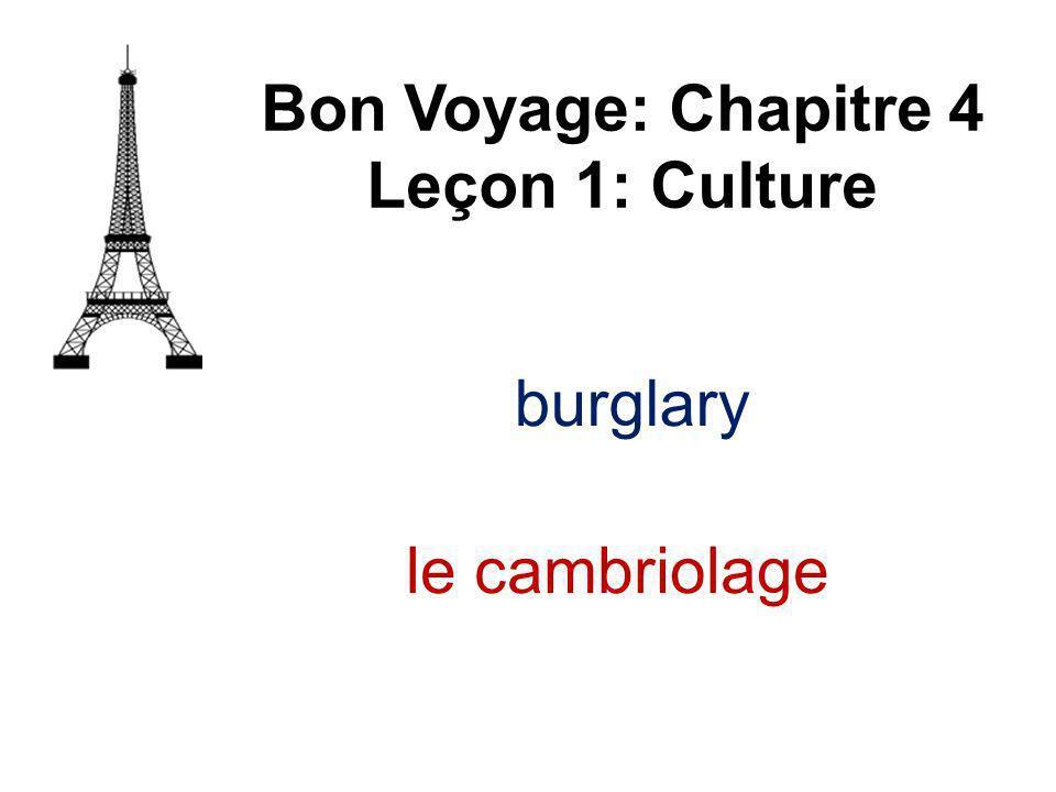 le truc Bon Voyage: Chapitre 4 Leçon 1: Culture trick