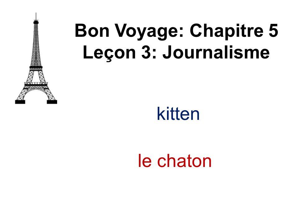 Bon Voyage: Chapitre 5 Leçon 3: Journalisme le chaton