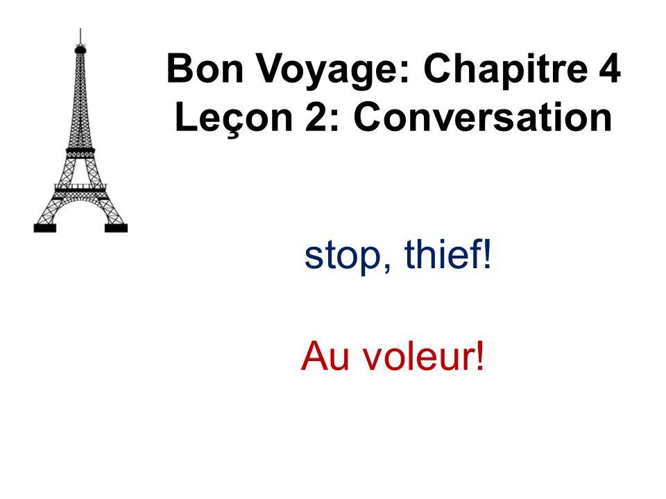 Bon Voyage: Chapitre 4 Leçon 2: Conversation Au voleur!