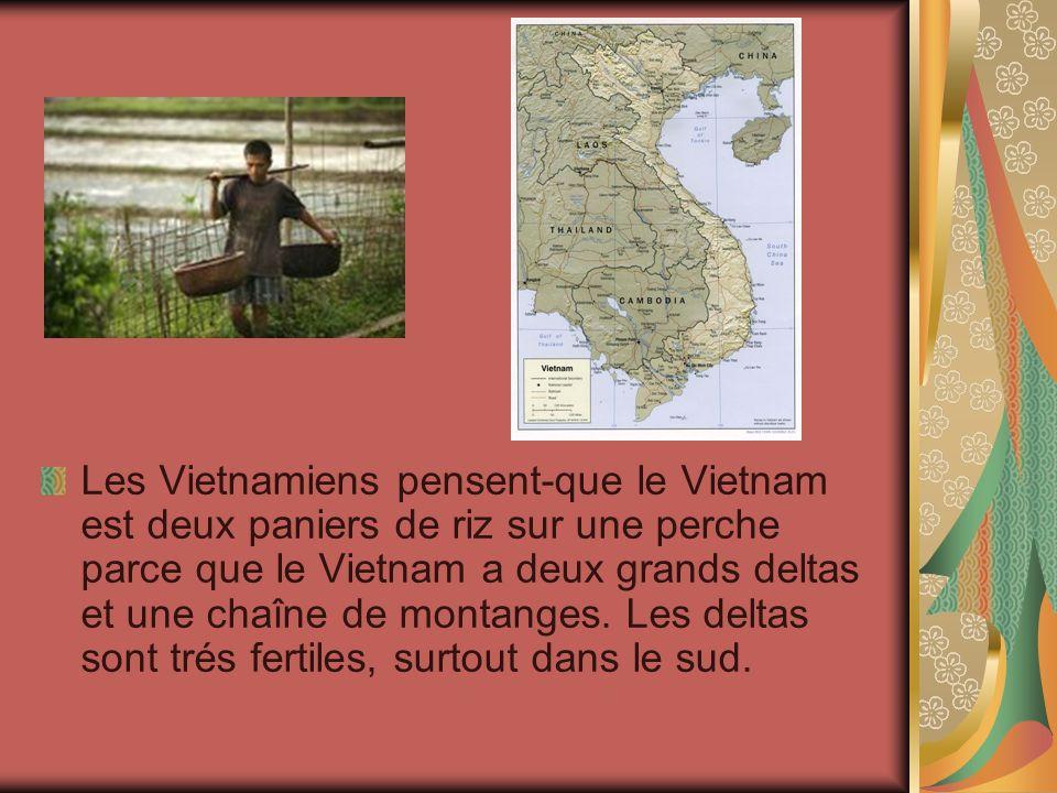 Les Vietnamiens pensent-que le Vietnam est deux paniers de riz sur une perche parce que le Vietnam a deux grands deltas et une chaîne de montanges.