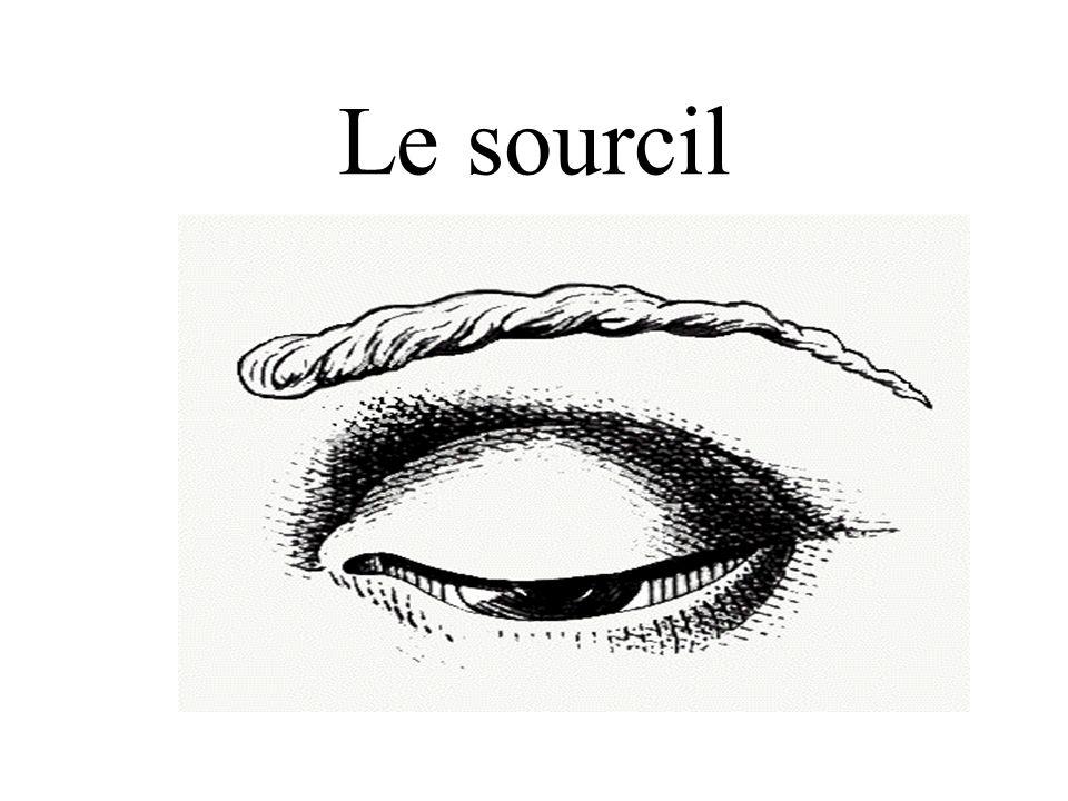 Le sourcil