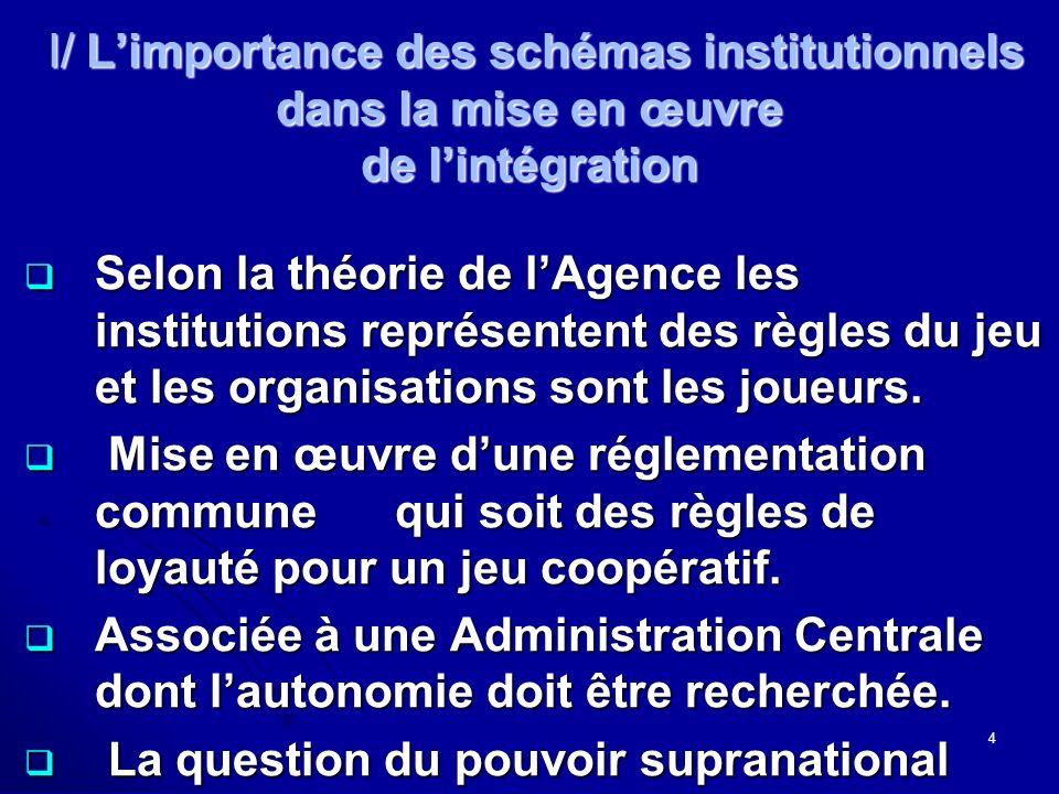 I/ Limportance des schémas institutionnels dans la mise en œuvre de lintégration I/ Limportance des schémas institutionnels dans la mise en œuvre de lintégration Selon la théorie de lAgence les institutions représentent des règles du jeu et les organisations sont les joueurs.