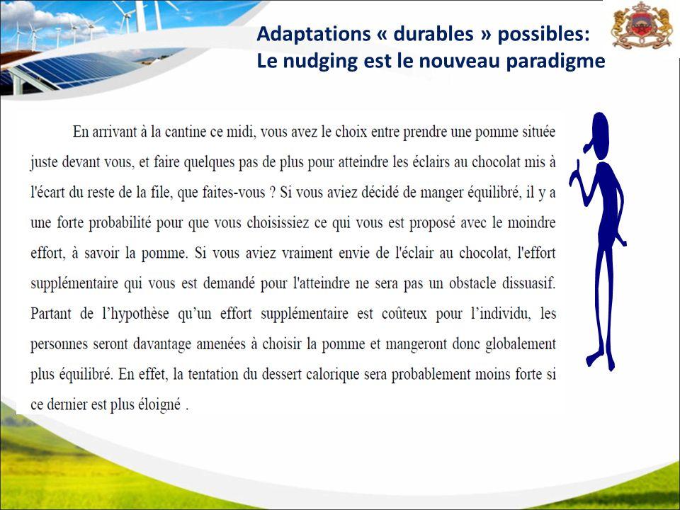 Adaptations « durables » possibles: Le nudging est le nouveau paradigme